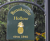 Brookville Hollow (Stockton NJ)